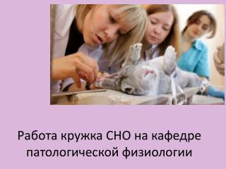 Работа кружка СНО на кафедре патологической физиологии