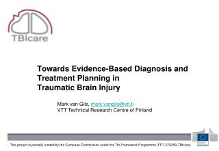 Towards Evidence-Based Diagnosis and Treatment Planning in  Traumatic Brain Injury