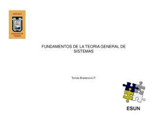 FUNDAMENTOS DE LA TEORIA GENERAL DE SISTEMAS Tomás Bradanovic P.