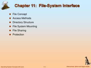 Chapter 11:  File-System Interface