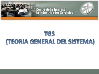TGS  (TEORIA GENERAL DEL  SISTEMA)
