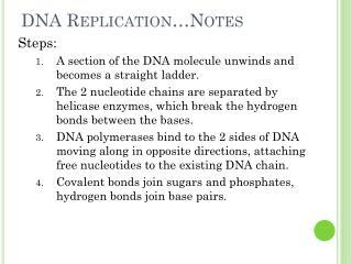 DNA Replication…Notes