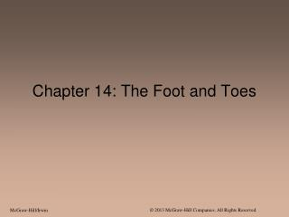 Chapter 14: The Foot and Toes