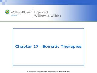 Chapter 17  Somatic Therapies