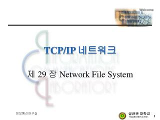 TCP/IP  네트워크