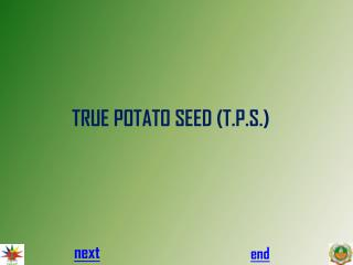 TRUE POTATO SEED (T.P.S.)