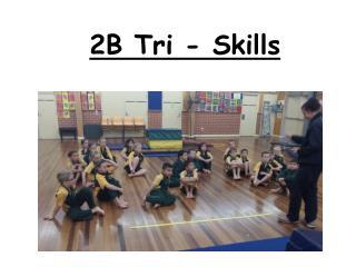 2B Tri - Skills