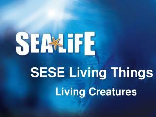 Living Creatures