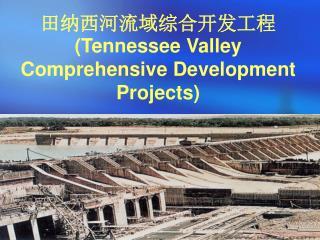 田纳西河流域综合开发工程 (Tennessee Valley Comprehensive Development Projects)