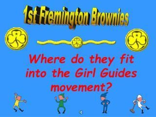 1st Fremington Brownies