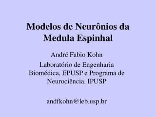 Modelos de Neur nios da Medula Espinhal