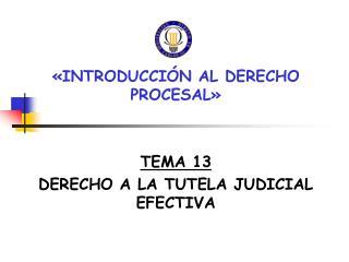 «INTRODUCCIÓN AL DERECHO PROCESAL» TEMA 13 DERECHO A LA TUTELA JUDICIAL EFECTIVA