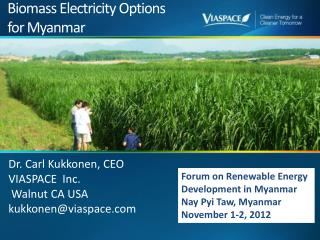 Biomass Electricity Options for Myanmar
