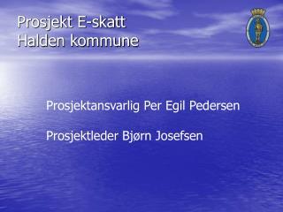 Prosjekt E-skatt  Halden kommune