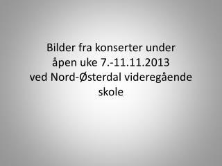 Bilder fra konserter under  åpen uke 7.-11.11.2013 ved Nord-Østerdal videregående skole