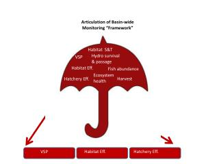 "Articulation of Basin-wide  Monitoring ""Framework"""