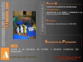 P ROYECT O COMPRA DE ELEMENTOS DEPORTIVOS . ESTRATEGIA S