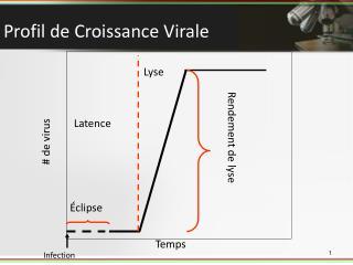 Profil de Croissance Virale