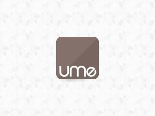 UME Sistemas