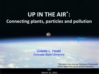 UP IN THE AIR * :  Connecting plants, particles and pollution