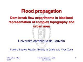 Université catholique de Louvain Sandra Soares Frazão, Nicolas le Grelle and Yves Zech