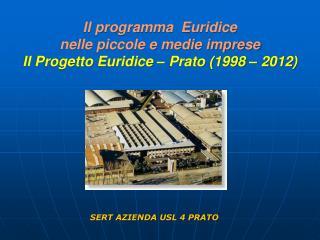 Il programma  Euridice  nelle piccole e medie imprese  Il Progetto Euridice – Prato (1998 – 2012)