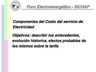 Foro Electroenerg�tico - SICHAP