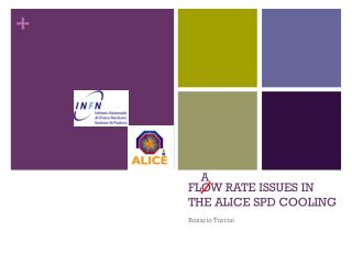 FLOW RATE ISSUES IN THE ALICE  SPD COOLING