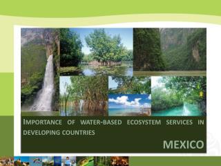 Importance of water-based ecosystem services in developing  countries MEXICO