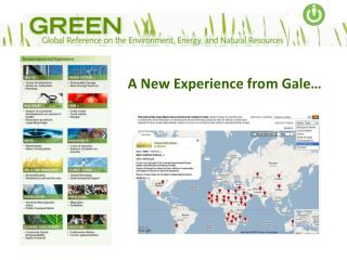 A New Experience from Gale…