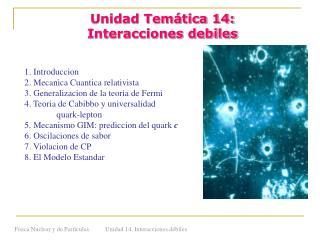 Unidad Temática 14: Interacciones debiles