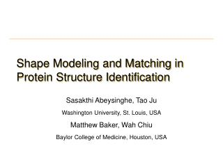 Shape Modeling and Matching in Protein Structure Identification