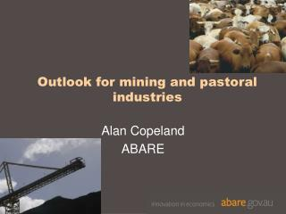 Outlook for mining and pastoral industries