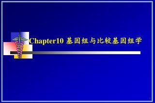 Chapter10 基因组与比较基因组学