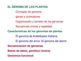 EL GENOMA DE LAS PLANTAS . Concepto de genoma genes y cromosoma