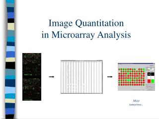 Image Quantitation in Microarray Analysis