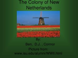 The Colony of New Netherlands