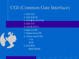 CGI (Common Gate Interface)