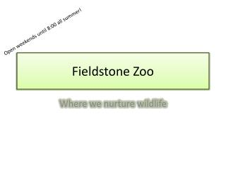 Fieldstone Zoo