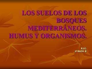 LOS SUELOS DE LOS BOSQUES MEDITERR�NEOS. HUMUS Y ORGANISMOS. E.J.C. 2� BACH. B