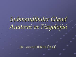 Submandibuler Gland Anatomi ve Fizyolojisi