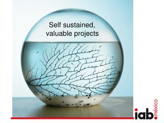 Self sustained,  valuable projects