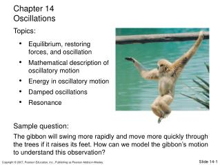 Equilibrium, restoring forces, and oscillation Mathematical description of oscillatory motion