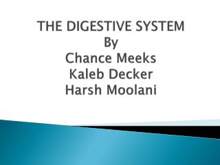 THE DIGESTIVE SYSTEM By Chance Meeks Kaleb Decker Harsh  Moolani