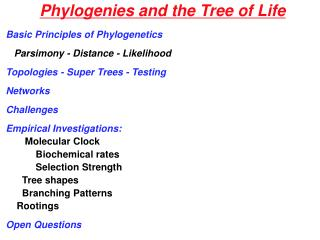 Phylogenies and the Tree of Life