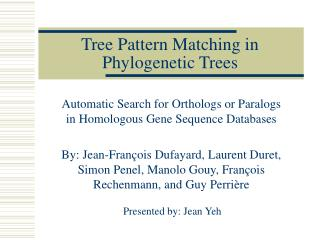 Tree Pattern Matching in Phylogenetic Trees