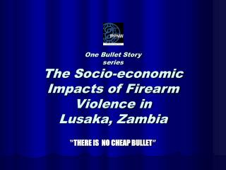One Bullet Story  series The Socio-economic Impacts of Firearm Violence in  Lusaka, Zambia