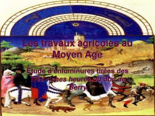 Les travaux agricoles au Moyen Age