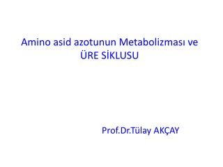 Amino  asid  azotunun Metabolizmas? ve  �RE S?KLUSU