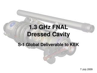 1.3 GHz FNAL Dressed Cavity